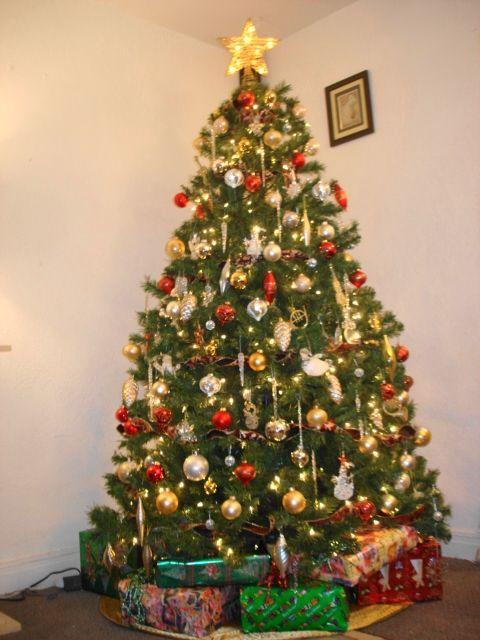 Da protecci n civil del df consejos a poblaci n sobre - Ver arboles de navidad ...