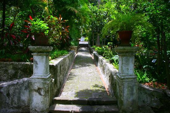 Pide acad mico de la uam protecci n a paisajes y jardines for Jardines mexico