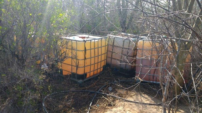 Policía Federal localiza toma clandestina de hidrocarburo en Sonora