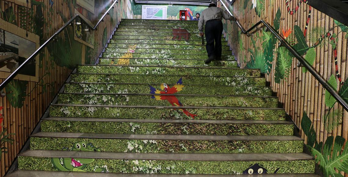Crece la selva en instalaciones del metro viveros for Viveros en toluca